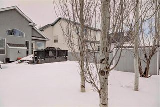 Photo 35: 246 CHAPARRAL Place SE in Calgary: Chaparral House for sale : MLS®# C4172141