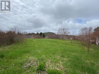 Photo 4: 71 Road to the Isles in Summerford: Vacant Land for sale : MLS®# 1229209