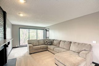 Photo 20: 68 Bermondsey Way NW in Calgary: Beddington Heights Detached for sale : MLS®# A1152009