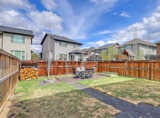 Photo 36: 118 Auburn Shores Crescent SE in Calgary: Auburn Bay Detached for sale : MLS®# A1110641
