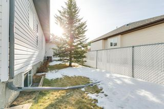 Photo 29: 320 Sunset Way: Crossfield Detached for sale : MLS®# A1061148