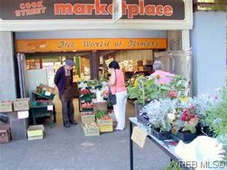 Photo 18: 101 1050 Park Blvd in VICTORIA: Vi Fairfield West Condo for sale (Victoria)  : MLS®# 570311