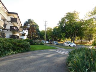 Photo 25: 216 964 Heywood Ave in : Vi Fairfield West Condo for sale (Victoria)  : MLS®# 856887
