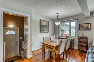 Photo 23: 2728 43 Street SW in Calgary: Glendale Detached for sale : MLS®# A1117670