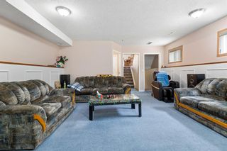 Photo 17: 249 martindale Boulevard NE in Calgary: Martindale Detached for sale : MLS®# A1116896
