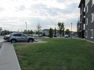 Photo 32: 207 111 WATT Common in Edmonton: Zone 53 Condo for sale : MLS®# E4259002
