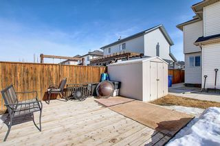 Photo 46: 260 SPRINGMERE Way: Chestermere Detached for sale : MLS®# A1073459