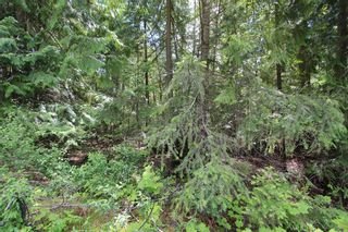 Photo 5: Lot 96 Crowfoot Drive in Anglemont: North Shuswap Land Only for sale (Shuswap)  : MLS®# 10158355