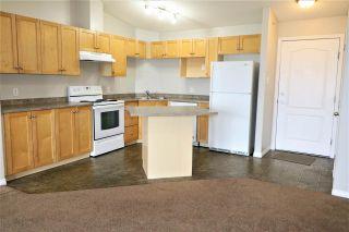 Photo 4: 415 111 EDWARDS Drive in Edmonton: Zone 53 Condo for sale : MLS®# E4243997