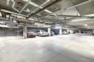 Photo 34: 3225 6818 Pinecliff Grove NE in Calgary: Pineridge Apartment for sale : MLS®# A1053438