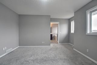 Photo 32: 6 Redstone Manor NE in Calgary: Redstone Detached for sale : MLS®# A1106448