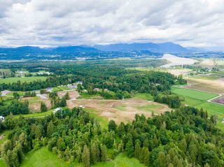 Photo 13: 31050 HARRIS Road in Abbotsford: Bradner House for sale : MLS®# R2588526