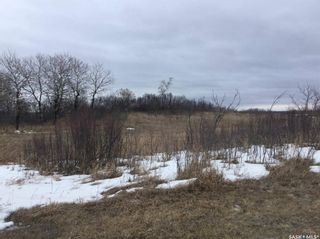 Photo 34: 1 Buffalo Springs Road in Montrose: Lot/Land for sale (Montrose Rm No. 315)  : MLS®# SK860349