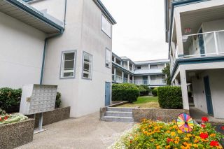 Photo 2: 104 11519 BURNETT Street in Maple Ridge: East Central Condo for sale : MLS®# R2174212