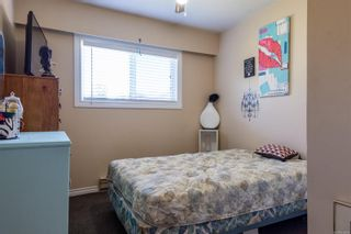 Photo 22: 177 S Birch St in : CR Campbell River Central House for sale (Campbell River)  : MLS®# 856964