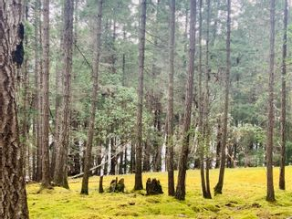 Photo 1: Lot 36 Ling Cod Lane in : Isl Mudge Island Land for sale (Islands)  : MLS®# 869675