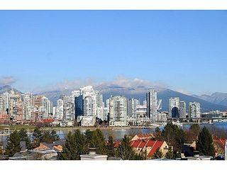 Photo 18: 2268 ALDER Street in Vancouver West: Home for sale : MLS®# V1045830