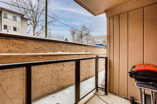 Photo 12: 106 728 3 Avenue NW in Calgary: Sunnyside Apartment for sale : MLS®# A1061819