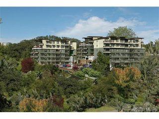 Photo 1: 105 1016 Inverness Rd in VICTORIA: SE Quadra Condo for sale (Saanich East)  : MLS®# 733030