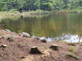 Photo 6: Lot 49 Eagle Rock Drive in Franey Corner: 405-Lunenburg County Residential for sale (South Shore)  : MLS®# 202125889