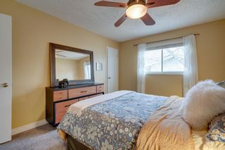 Photo 19: 1840 33 Avenue SW in Calgary: South Calgary Detached for sale : MLS®# A1100714