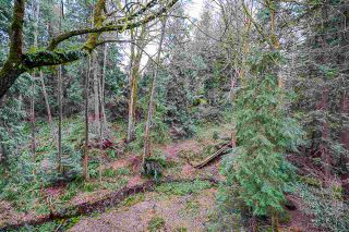 """Photo 29: 20068 41A Avenue in Langley: Brookswood Langley House for sale in """"Brookswood"""" : MLS®# R2558528"""