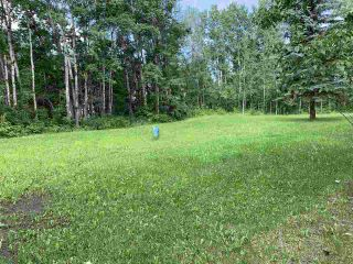Photo 5: #105 54500 Lac Ste Anne Tr.: Rural Sturgeon County Rural Land/Vacant Lot for sale : MLS®# E4227654