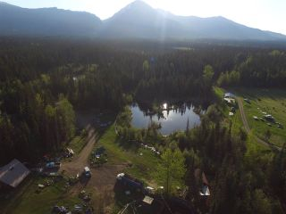 Photo 38: 16563 OLD BABINE LAKE Road in Smithers: Smithers - Rural House for sale (Smithers And Area (Zone 54))  : MLS®# R2537253