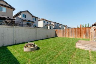 Photo 39: 178 Morningside Circle SW: Airdrie Detached for sale : MLS®# A1127852