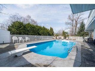 Photo 29: 12171 102 Avenue in Surrey: Cedar Hills House for sale (North Surrey)  : MLS®# R2562343