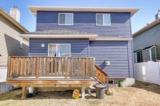 Photo 27: 8230 Saddleridge Drive NE in Calgary: Saddle Ridge Detached for sale : MLS®# A1085120