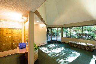 Photo 16: 104 10626 151A STREET in Surrey: Guildford Condo for sale (North Surrey)  : MLS®# R2286642