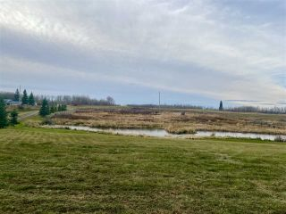 Photo 3: 49101 Range Road 233: Rural Leduc County Rural Land/Vacant Lot for sale : MLS®# E4219459