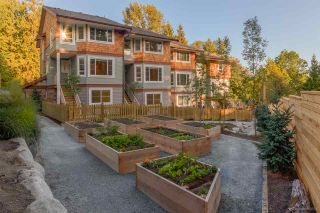 """Photo 4: 15 23651 132ND Avenue in Maple Ridge: Silver Valley Townhouse for sale in """"MYRONS MUSE AT SILVER VALLEY"""" : MLS®# R2034212"""