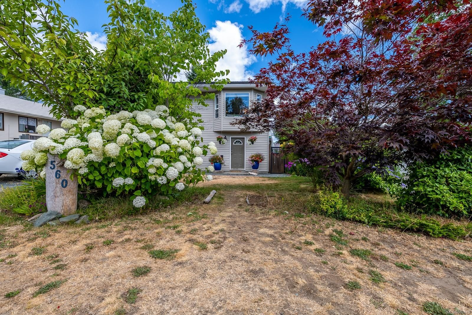 Main Photo: 560 6th Ave in : CR Campbell River Central House for sale (Campbell River)  : MLS®# 882479
