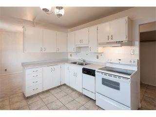 Photo 7: 1203 MACKID Road NE in Calgary: Mayland Heights House for sale : MLS®# C4036738