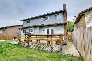 Photo 38: 23 Castlefall Way NE in Calgary: Castleridge Detached for sale : MLS®# A1141276