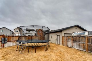 Photo 44: 92 COPPERPOND Mews SE in Calgary: Copperfield Detached for sale : MLS®# A1084015