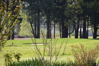 """Photo 8: 83 14550 MORRIS VALLEY Road in Mission: Lake Errock Land for sale in """"River Reach"""" : MLS®# R2489480"""