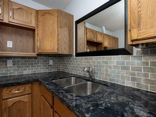 Photo 18: 313 2211 29 Street SW in Calgary: Killarney/Glengarry Apartment for sale : MLS®# A1138201