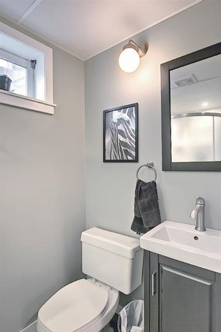 Photo 24: 80 Erin Grove Close SE in Calgary: Erin Woods Detached for sale : MLS®# A1107308