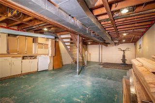 Photo 18: 91 Verbena Street in Winnipeg: Garden City Residential for sale (4G)  : MLS®# 1919284