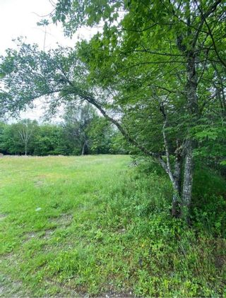 Photo 9: 27 Winslow's Road in Lake George: 407-Shelburne County Vacant Land for sale (South Shore)  : MLS®# 202123339