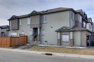 Main Photo: 247 Nolan Hill Drive NW in Calgary: Nolan Hill Detached for sale : MLS®# A1091849
