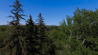 Photo 9: River John Road in Sundridge: 108-Rural Pictou County Vacant Land for sale (Northern Region)  : MLS®# 202115166