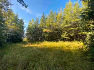 Photo 6: Lot Seaview Road in Seaview: 305-Richmond County / St. Peters & Area Vacant Land for sale (Highland Region)  : MLS®# 202124486