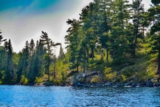 Photo 16: Lot 8 Five Point Island in South of Kenora: Vacant Land for sale : MLS®# TB212085