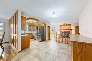 Photo 10: 45 Martinview Crescent NE in Calgary: Martindale Detached for sale : MLS®# A1112618