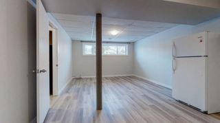 Photo 21: 3807 49 Street NE in Calgary: Whitehorn Detached for sale : MLS®# A1066626