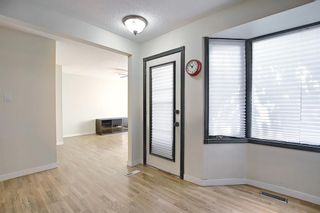 Photo 9: 3423 30A Avenue SE in Calgary: Dover Detached for sale : MLS®# A1114243